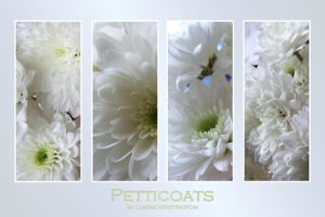 Petticoats by ArtistsForCharity