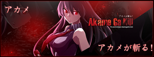 Akame Ga Kill Cover by zFlashyStyle
