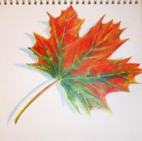 Autumn leaf (colored pencils) by KamilaM94