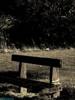 worn out bench by IamNasher