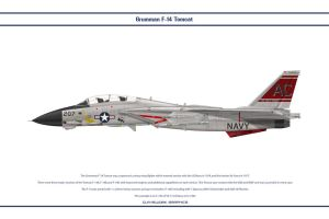 F-14A VF-31 1 by WS-Clave