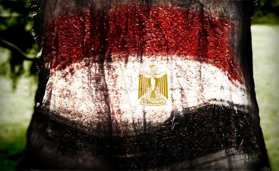 flag on a tree trunk by 555angelina555