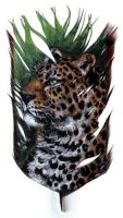 Jaguar on Feather by lenzamoon