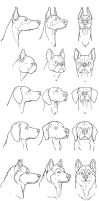 dogs breeds. by sofmer