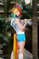 Dashie by MeganCoffey