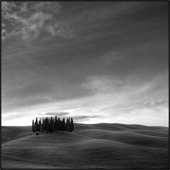 Tuscany 12 by lonelywolf2
