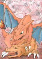 The End Of Charizard Battle by PsyLady