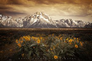Grand Tetons by kevron2001