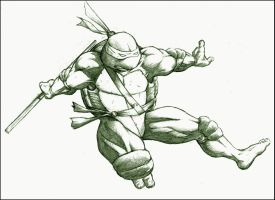 Donatello by mjt423