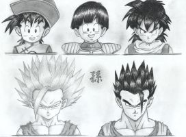 The REAL Son Gohan by KCMPssj
