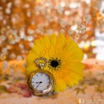 Time is running out by FrancescaDelfino