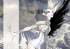 Swan Lake Fashion Illustration by mumitrold