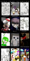 2009 Year in Review by LimeTH