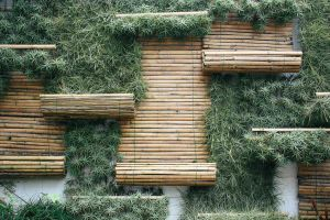 Bamboo Wall by nickcomito
