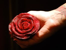 Preview: Beet Rose by snerk