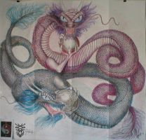 ::Dragons Finished work:: by taria