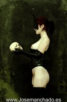 Tribute to Ray Donley by josemanchado