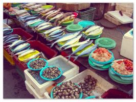 Korean fish street market by sataikasia
