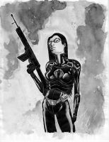 GI Joe: Baroness Paint by Templesmith