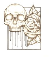 skull and rose by ToddryElliott