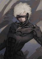 Raiden by WolfMoreStory