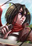 Shingeki no Kyojin: Mikasa by Kate-FoX