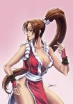 Commission: Mai Shiranui  KOF by Sano-BR