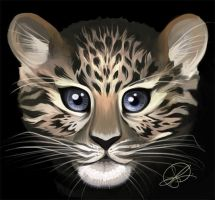 Amur leopard by thundercake