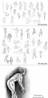 DAcad Anatomy Sketches by Zombiesmile
