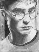 Harry - Finished by naturally-morbid