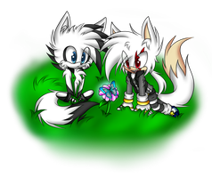 .::Two White Foxes::. by DJ-StarCore