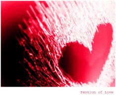 Passion of Love by DaliSina