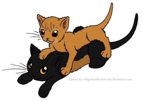 Spiderleg and Wolfpaw by lucymaggielover