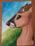 Poppy .:ACEO:. by Howling-Tanuki