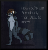 .:Somebody That I Used to Know:. by indesomniac