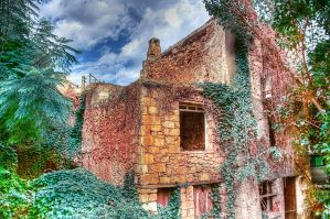 Flowered Decay by Quipith