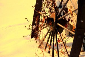 winter wheel by simply-complicated-1