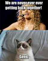 Taylor-Swift-And-Grumpy-Cat pic by theonlycheesecake