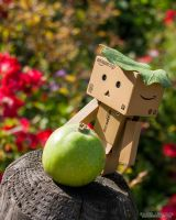 Danbo and the red apple - fruit adventure by Askarys