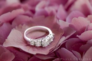 The Ring by La-Vita-a-Bella