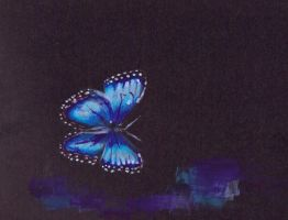 Butterfly by letmeusemyname