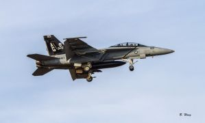 VFA-103 CAG Bird 201 by Grouper