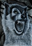 Angry Wolf by Orander