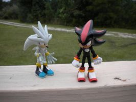 Caption this!: Shadow and Silver pic :Part 3: by Shadowsgirl54321