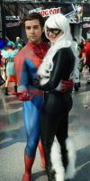 NYCC'14 Spiderman and Black Cat by zer0guard