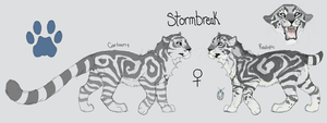 Stormbreak Reference Sheet by MBPanther