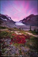 Colourful Tundra by Dani-Lefrancois