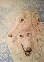 Two Borzois or Russian Wolfhounds by RaggedVixen