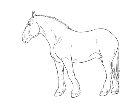 Boulonnais Lineart by The-White-Cottage