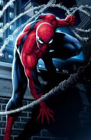 Spiderman by JPRart